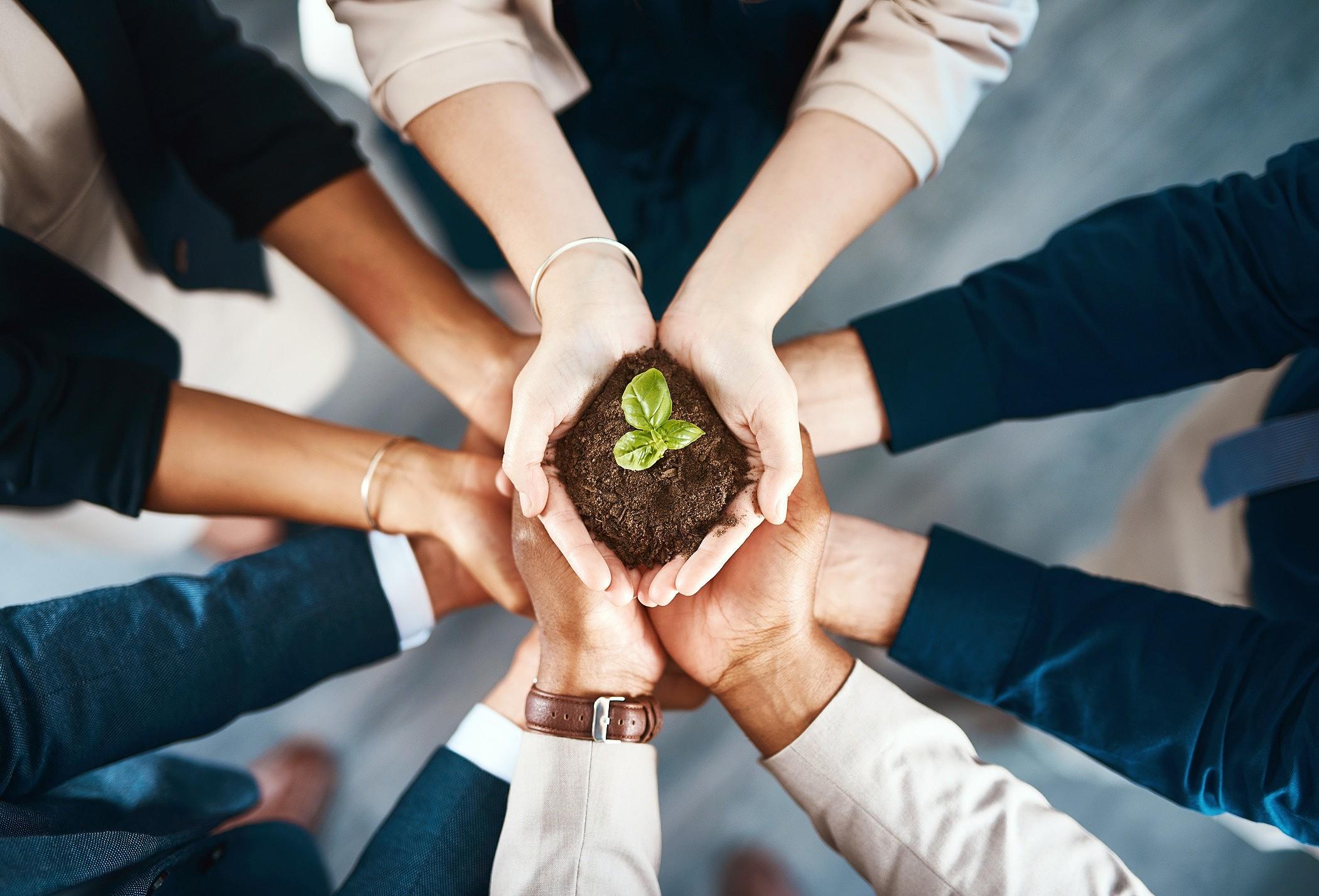 Sustentabilidade corporativa: o que você precisa saber sobre ela?